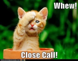whew-close-call-lolcat